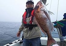 塩釜真鯛釣りの画像