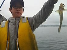 ハゼ釣り画像2